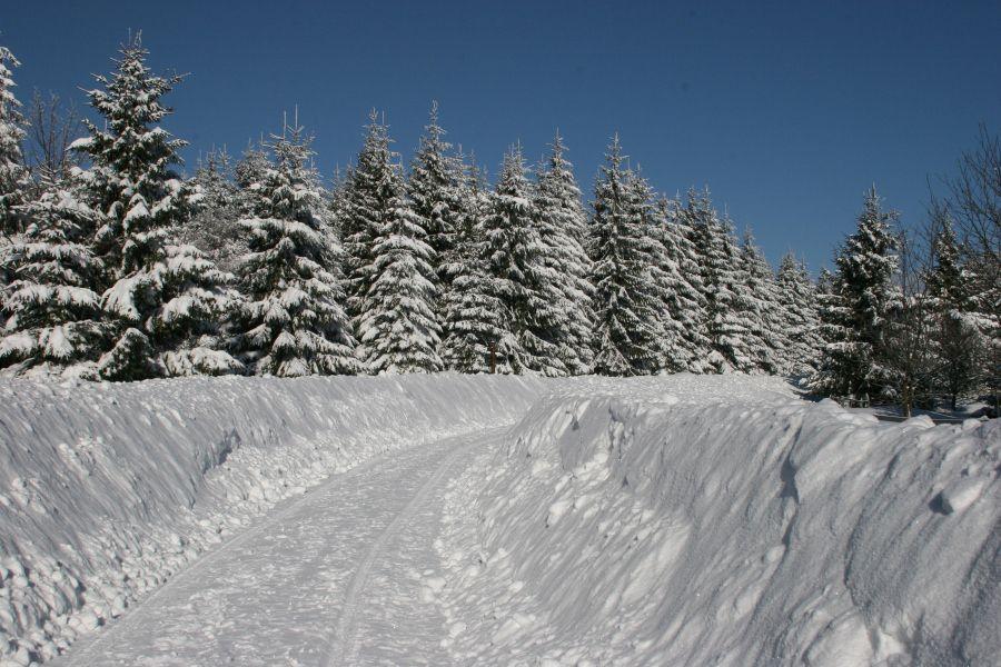 Wintersportgebiet Hohegei Relexa Hotel Braunlage